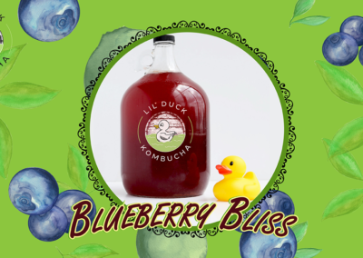 blueberry bliss kombucha social graphic