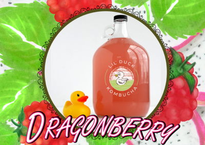dragonberry flavor kombucha lil duck social graphic