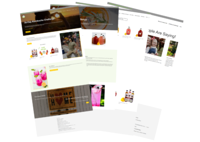 lil duck kombucha web design layouts