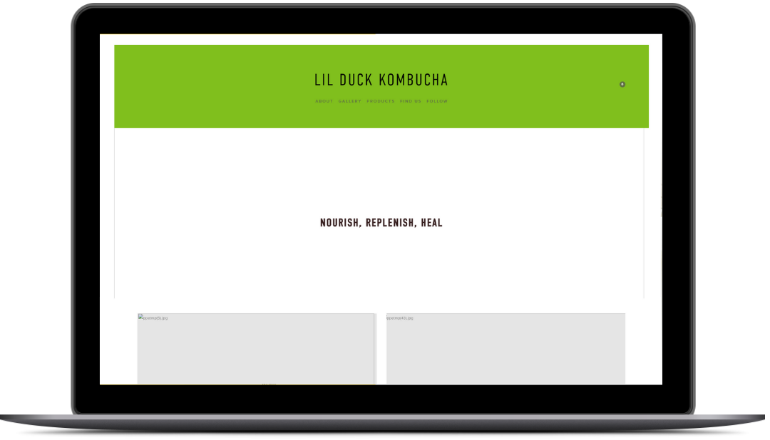 lil duck kombucha old web design homepage