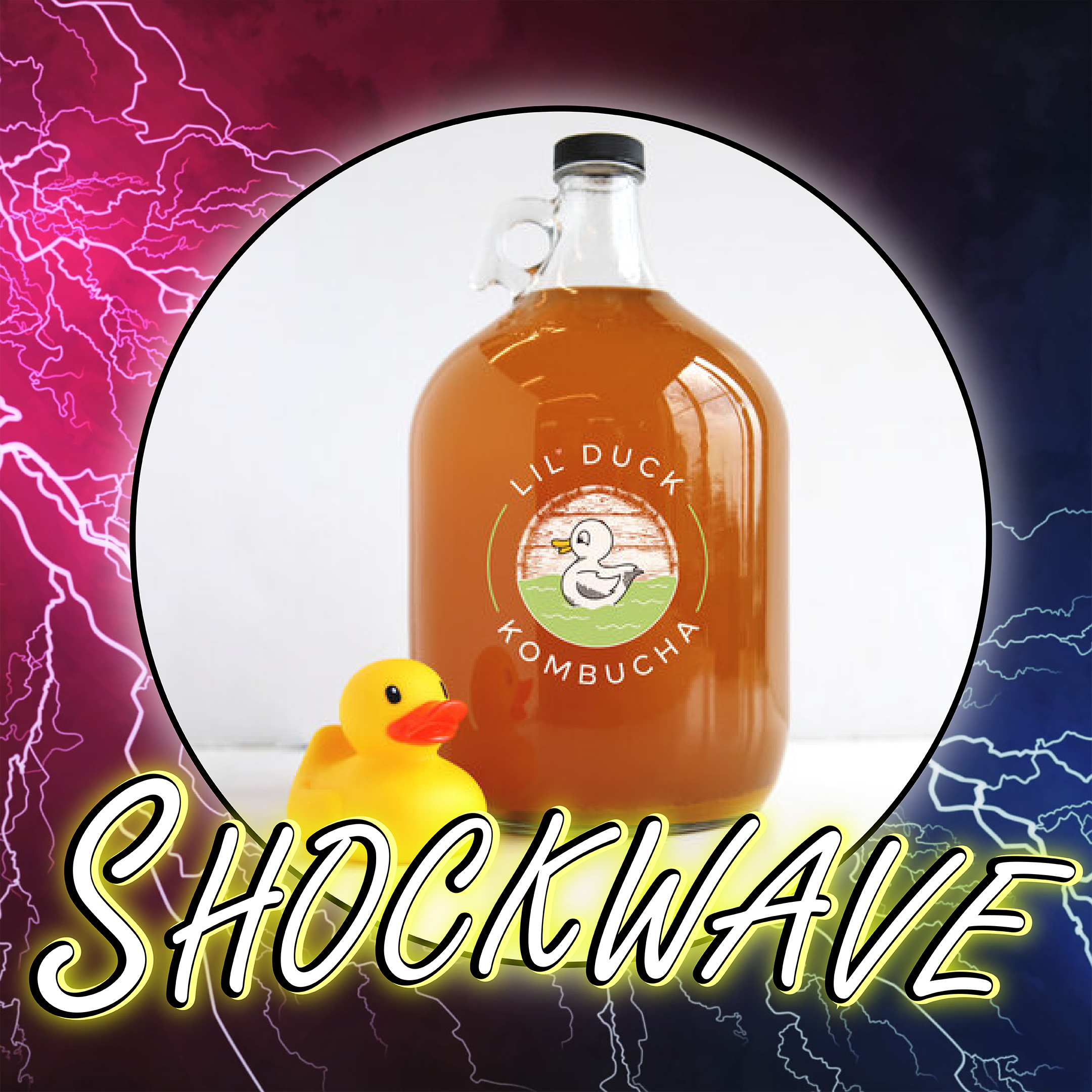 shockwave kombucha social media graphic design